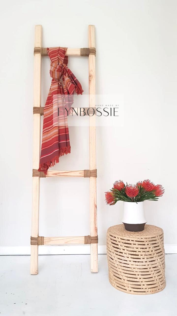 Cane ladder